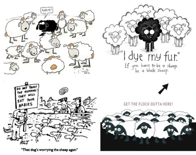 Sheep cartoons A
