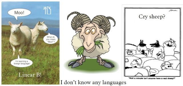 Sheep cartoonsC