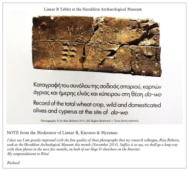 Record of wheat crops olives & cyperus Heraklion Archaeological Museum by Rita Roberts