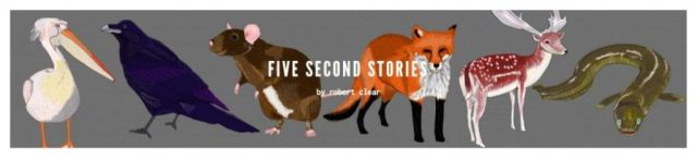 five second stories