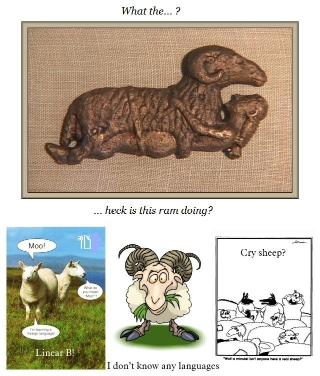 sheep humour a
