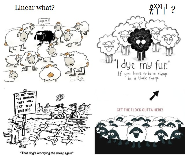 Linear B WHAT and sheep