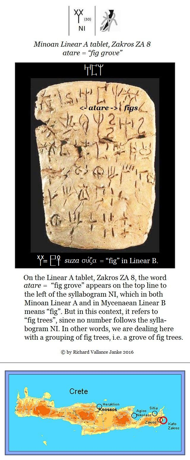 Linear A Zakros ZA 8 atare = fig grove