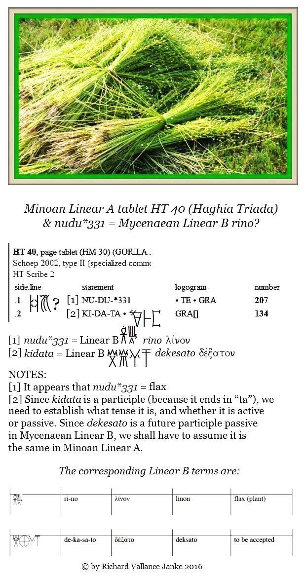 HT 40 nudu331 TE grains