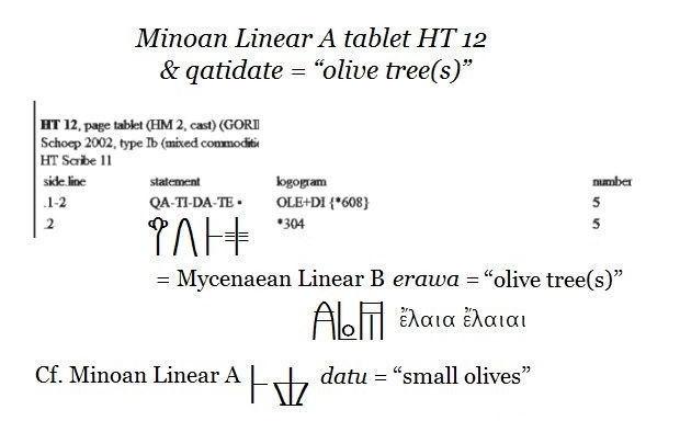 j-olive-oil