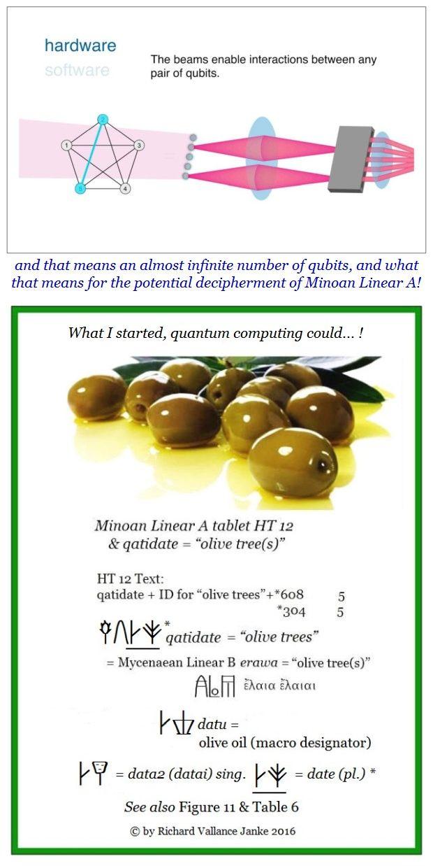 figure-9-ht-12-qatidate-olive-tree