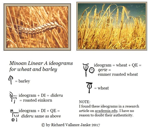 Linear A ideogams for wheat and barley