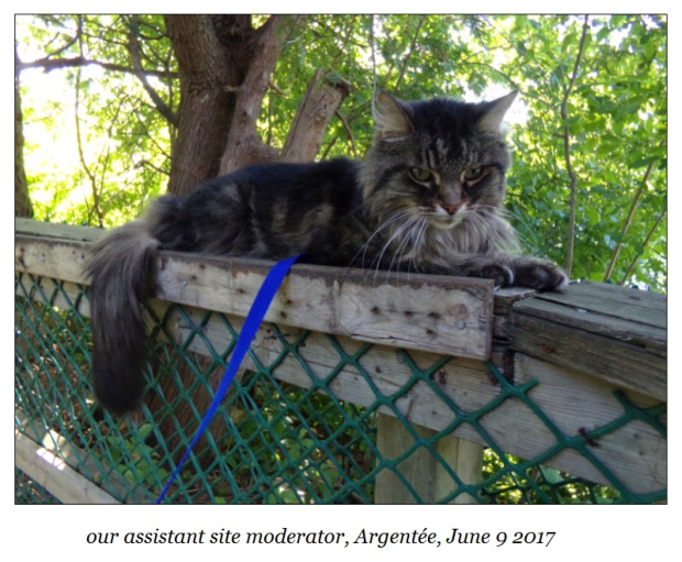 Argentee June 9 2017