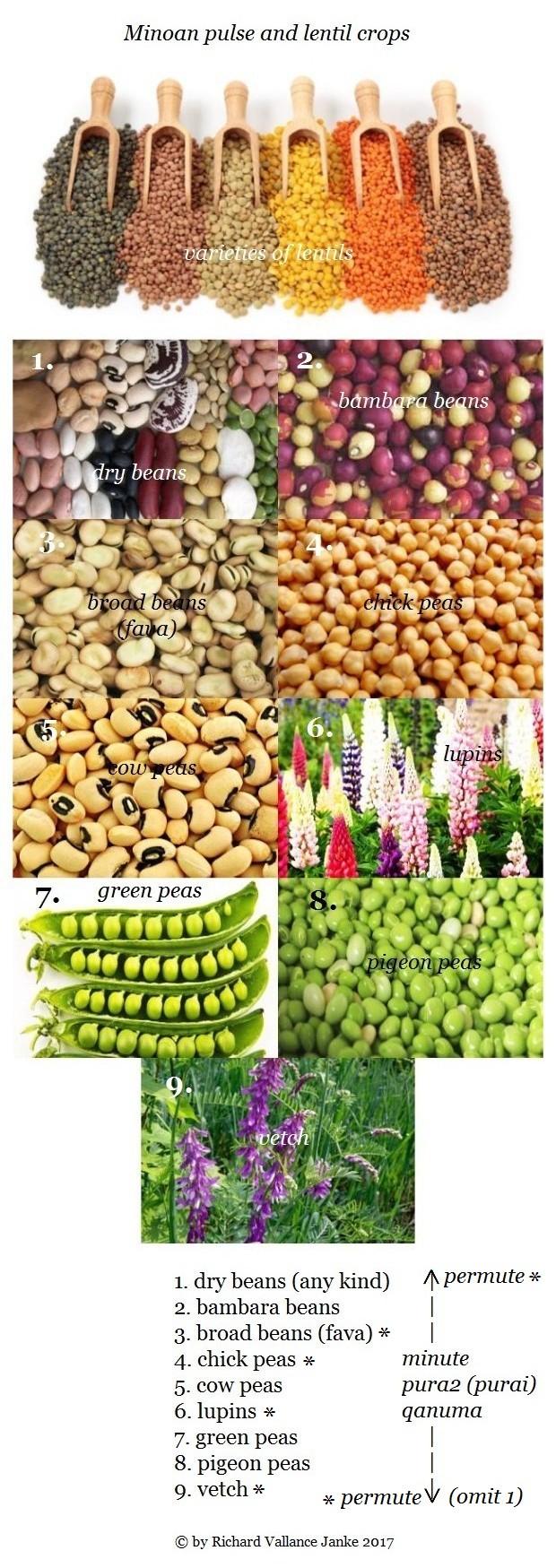 Minoan pulses diet