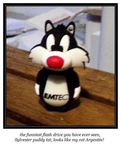 Sylvester flash drive