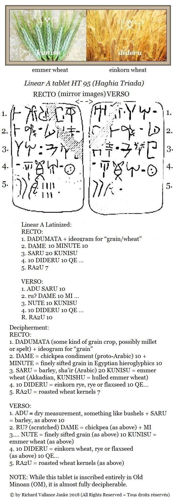 ht-95-dadumata-dame-minute-saru-kunisu-dideru