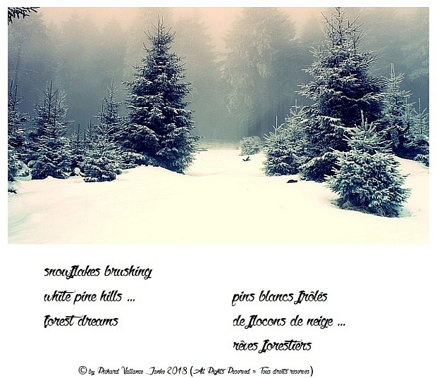 haiku snow white pines620