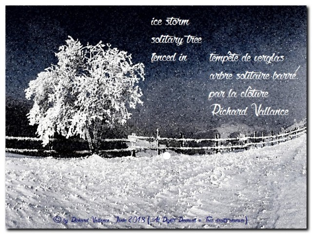 haiku snowstorm fence