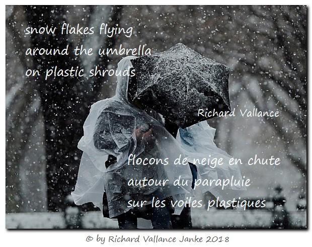 haiku snowstorm plastic