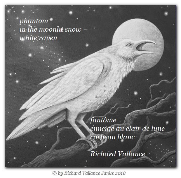 white raven haiku