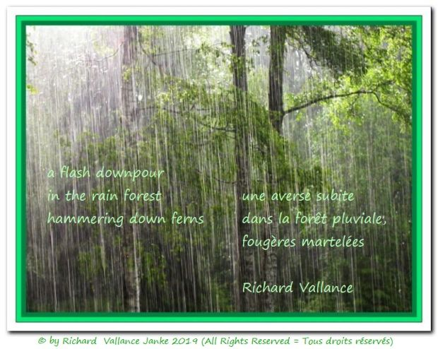 flash downpour haiku 620
