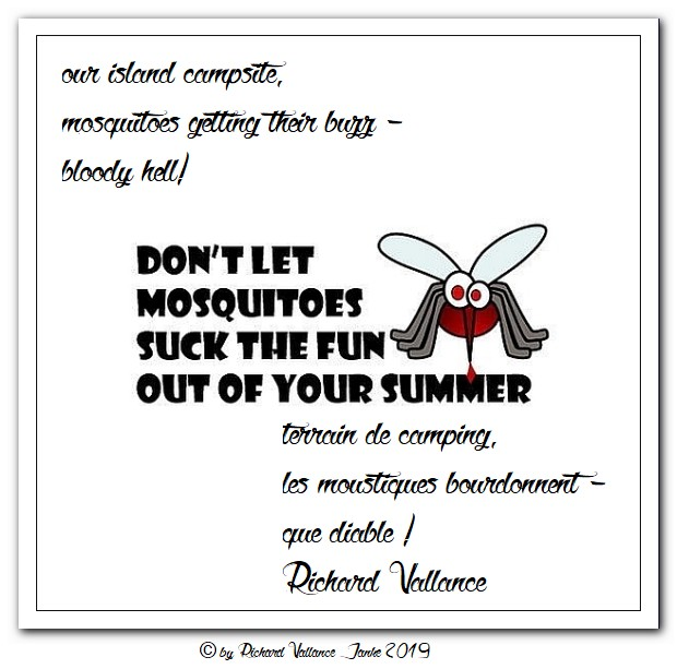 mosquitoes haiku