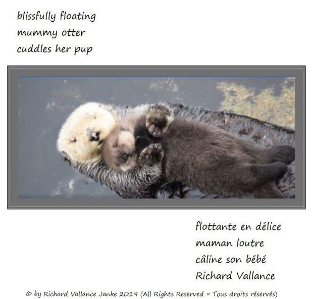 mummy otter haiku 620