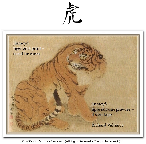 tiger jnmeyo haiku 620