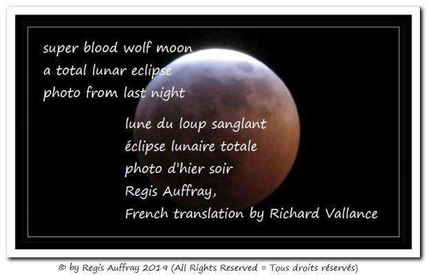 wolf moon 01-20-19 620