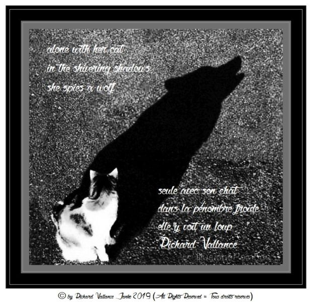 cat and wolf haiku 620