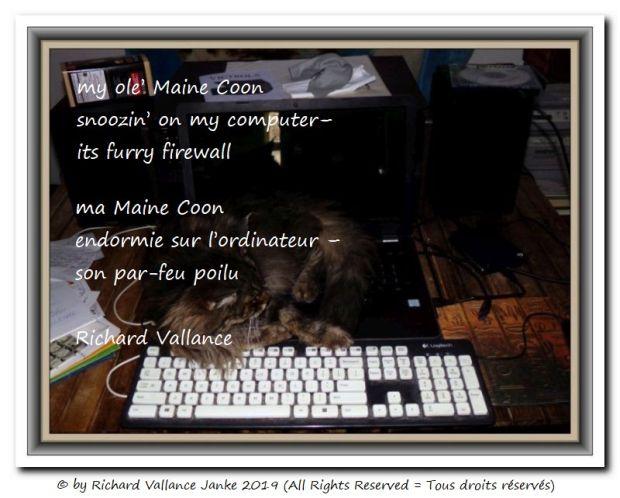 firewall senryu 620