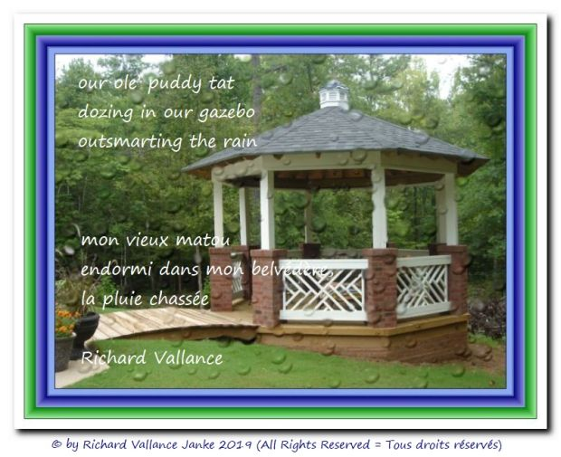 gazebo in the rain 620