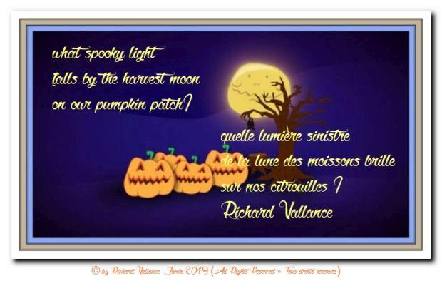 pumpkins in the moonlight 620