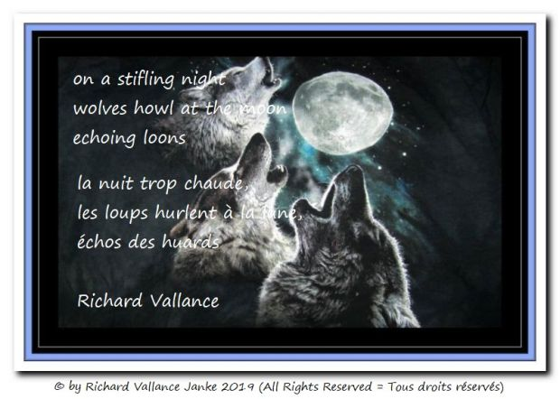 wolves howling at the moon 620