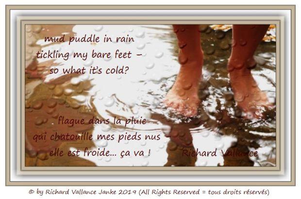 mud puddle 620