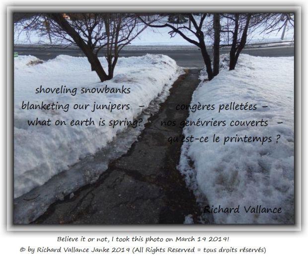 shoveling snowbanks haiku 620