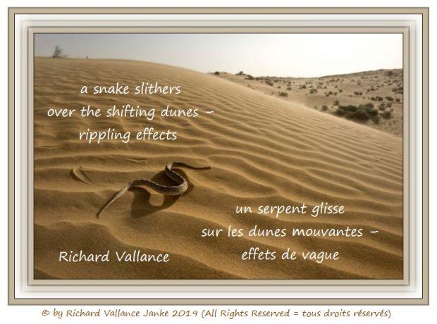 snake shifting dunes 620