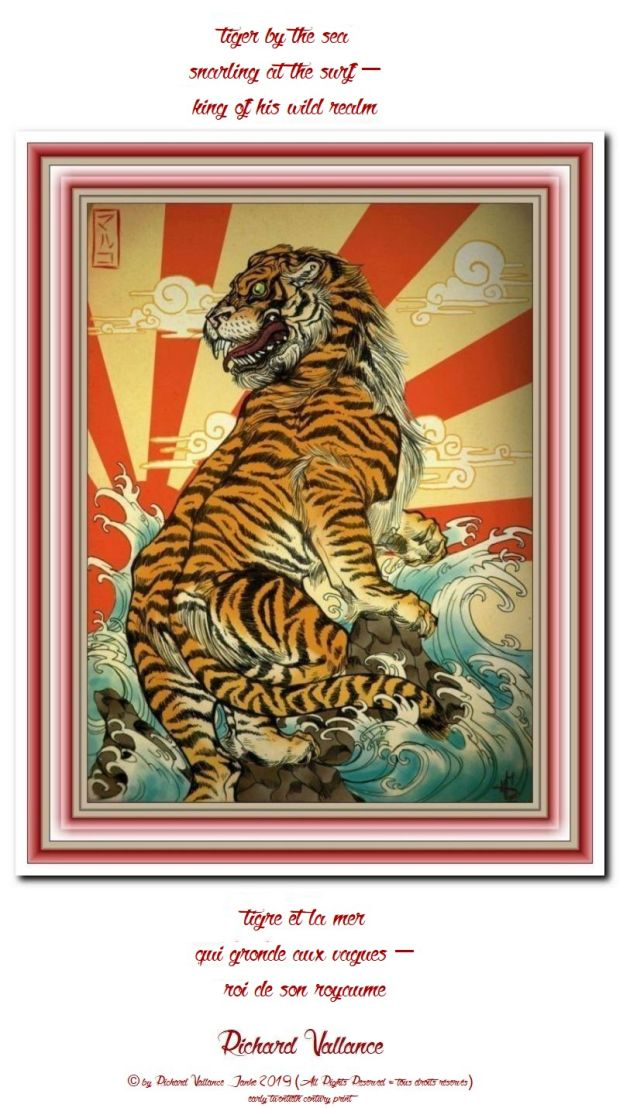 tiger by the ocean 620