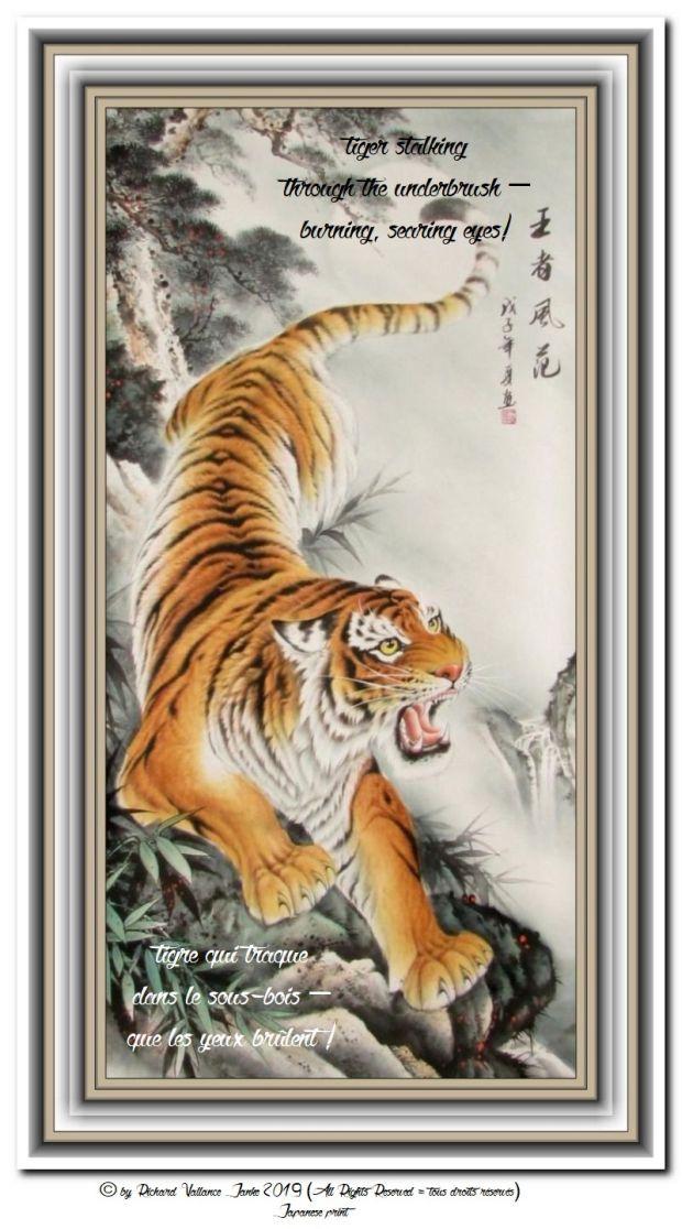 tiger forest 620