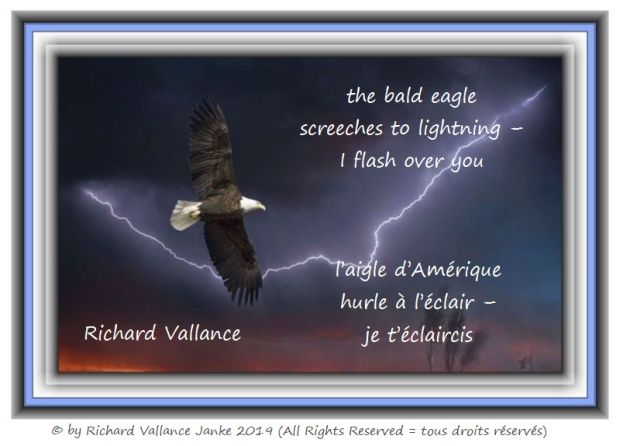 bald eagle and lightning 620