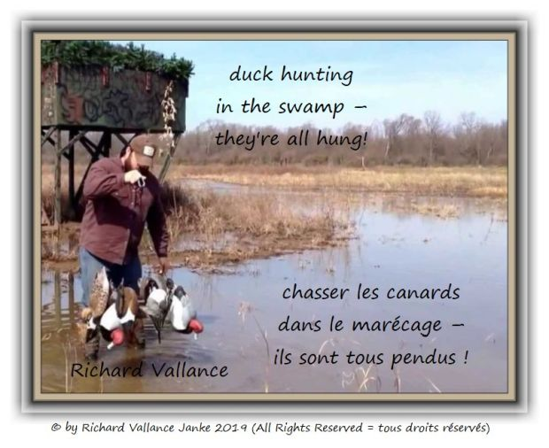 duck hunting 620