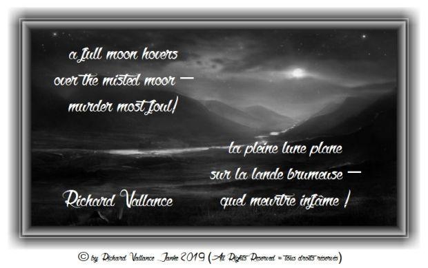 full moon on the misty moor 620