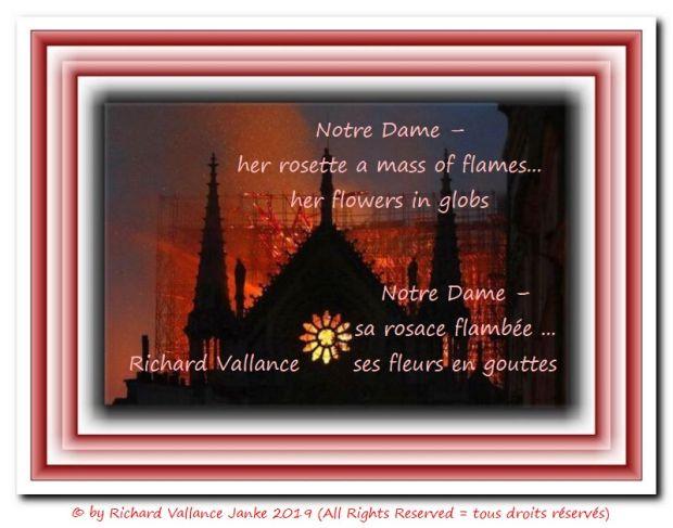 Notre Dame rosette on fire 620