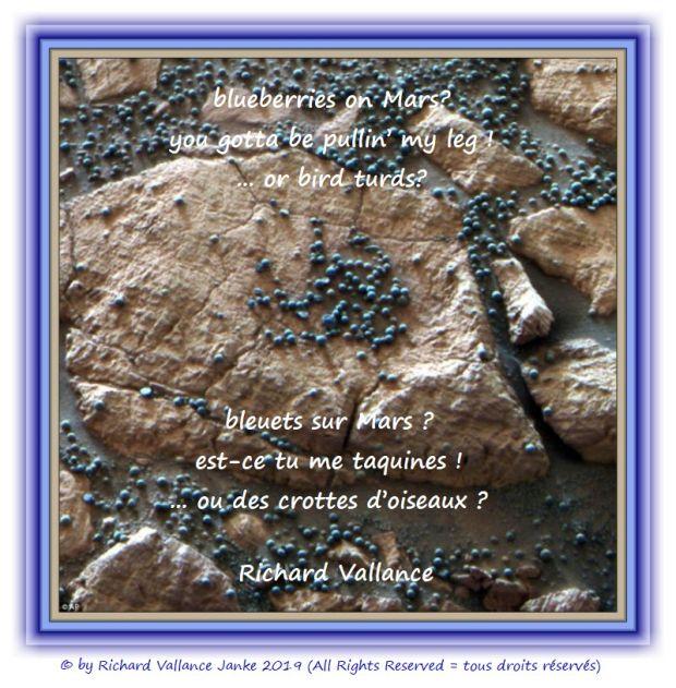 blueberries on mars 620