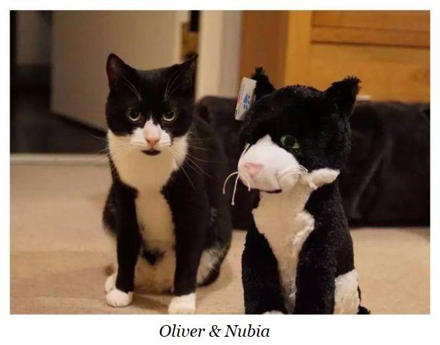 Oliver & Nubia