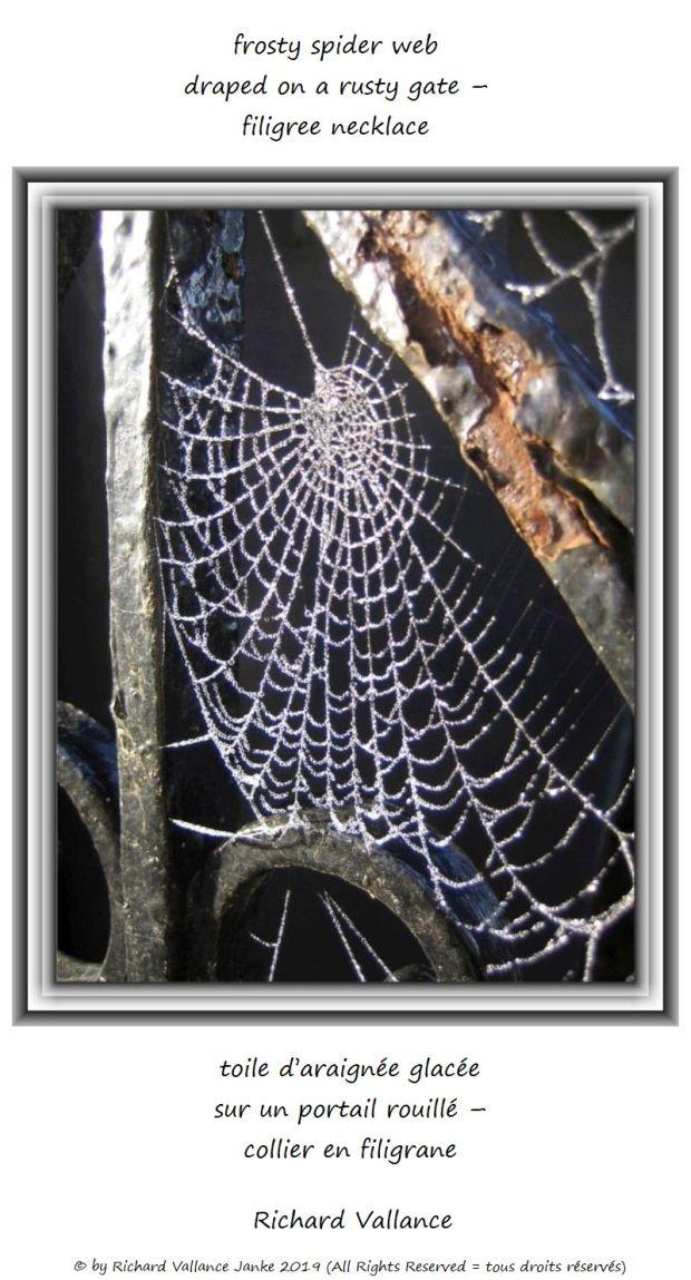 spider web rusty gate 620