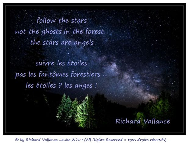 stars in the forest 620